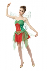 Adult Ladies Christmas Fairy Costume