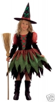 Girls Fairy Witch Costume