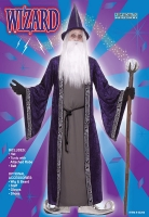 Wizard Costume 'Purple'