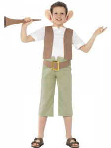 Roald dahl BFG boys fancy dress costume