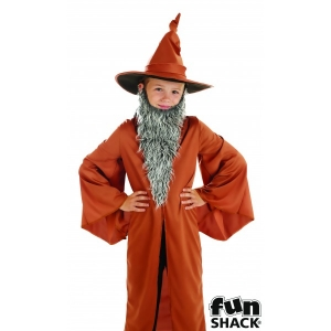 Boys Sorcerer's Apprentice Book Week Fancy Dress Costume