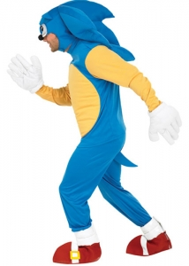 Sonic The Hedge Hog Fancy Dress Costume