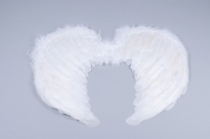Adult White Feather Angel Wings