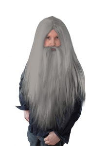 Halloween Grey Wizard Wig & Beard