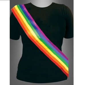 Pride/Carnival Rainbow Sash Fancy Dress Outfit Accessory
