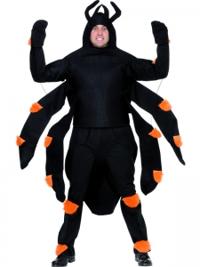 Giant Spider Fancy Dress Costume