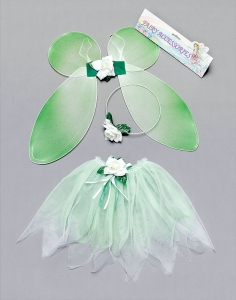 Green Fairy Costume Set