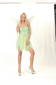 Tinkerbell Fairy Dress 'Green'