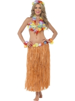 Hula Honey Instant fancy dress Kit