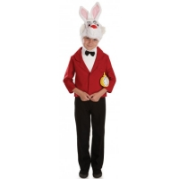Childrens Mr Rabbit Wonderland Costume