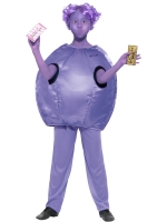 Roald Dahl Violet Beauregarde World Book Day Girls Fancy Dress Costume