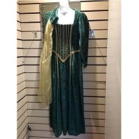 Green Medieval Historical Hire Ladies Costume