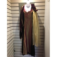 Ladies Historical Medieval Dress Hire Costume