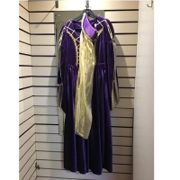 Ladies Historical Purple And Gold Medieval Queen Hire Costume
