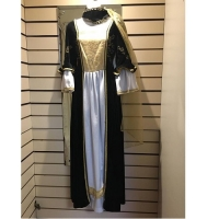 Ladies Historical Deluxe Medieval Hire Costume