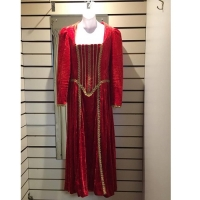Ladies Historical Red And Gold Detailed Dress Hire Costume