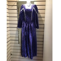 Ladies Historical Medieval Purple And Silver Dress Hire Costume