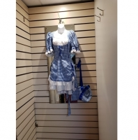 Ladies Historical Victorian Blue Dress Hire Costume