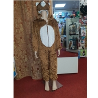Kids Bear Hire Costume