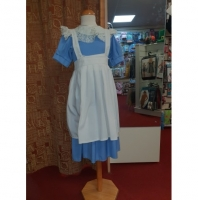 Girls Alice in Wonderland Hire Costume