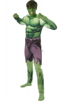 Adult Hulk Fancy Dress Costume