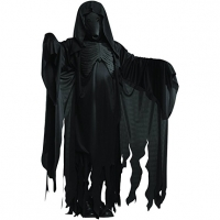 Mens Halloween Harry Potter Dementor Fancy Dress Costume STD