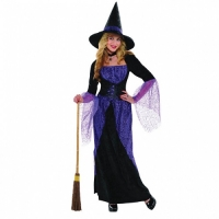 Ladies Pretty Potion Witch Halloween Fancy Dress Costume