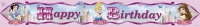 Disney Princess party birthday banner 4.5m long pack of 5