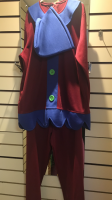 Mens Christmas Elf Hire Costume Blue and Brown