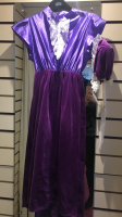 Girls Purple Princess  Hire Costume