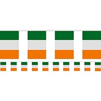 Irish Flag Plastic Bunting St Patrick's Day Party/ Celebration Decoration 7m