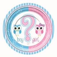 Baby Shower Gender Reveal Small Desert Party Plate's