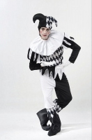 Adult Harlequin Jester Costume