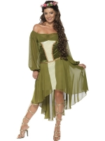 Ladies Robin Hood Fair Maiden Costume