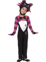 Tabby Cat Halloween Fancy Dress Costume