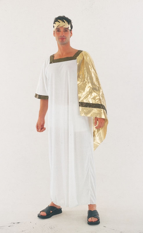Mens Caesar Roman Toga Costume Click Here for Larger Image  sc 1 st  Altered Image Fancy Dress & Mens Caesar Roman Toga Costume